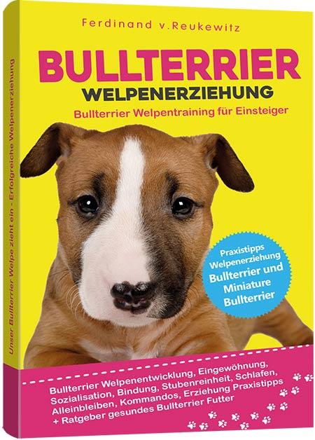 Bullterrier Buch Welpenerziehung